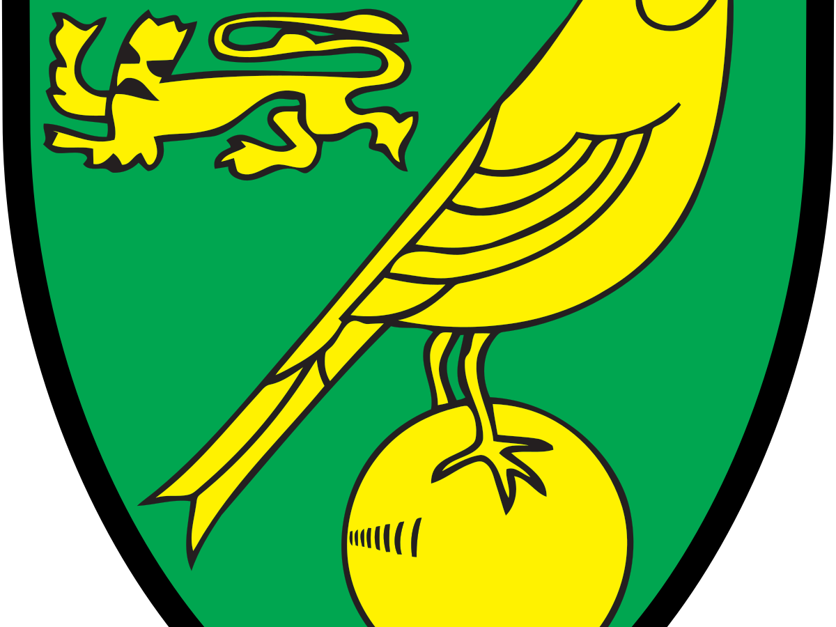 Norwich City Vs Southampton 6 19 20 Premier League Pick Prediction